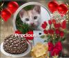 Precious of the animallover family