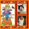 Kitty of the moka1961 family