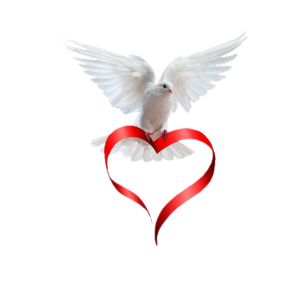 a dove with a heart ribbon