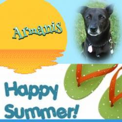 Armanis (Alma)