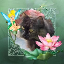 Lucya (Didi)