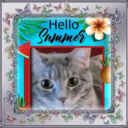Jenny (Pcats224)