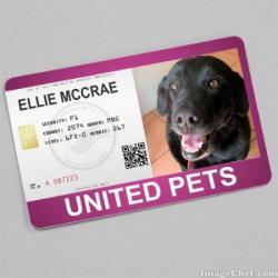 Ellie Mccrae