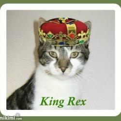 King Rex (thebugster08)