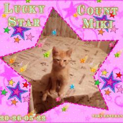 Count Miki (zoza1958)